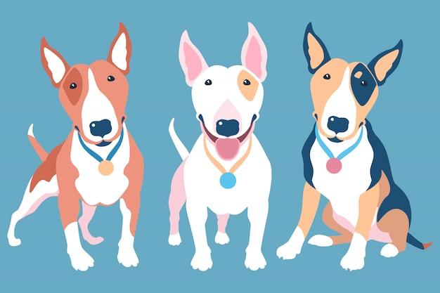 Insieme di vettore dei cani bull terrier di diversi colori tipici Vettore Premium