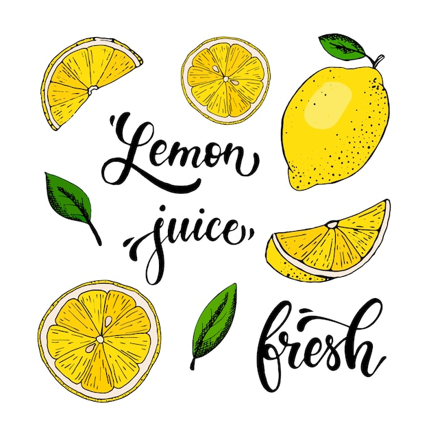 Insieme di vettore di limoni disegnati a mano, foglie e citazioni Vettore Premium