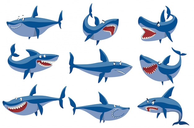Set di caratteri squalo vettoriale. Vettore Premium
