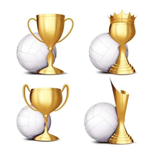 Volleyball game award Vettore Premium