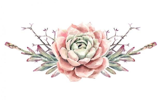 Bouquet di cactus e piante grasse di cactus dell'acquerello. pittura succulenta. pittura fiore rosa. Vettore Premium
