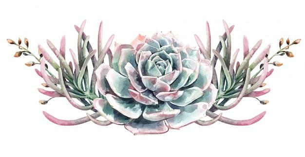 Bouquet di cactus e piante grasse di cactus dell'acquerello. pittura succulenta. Vettore Premium