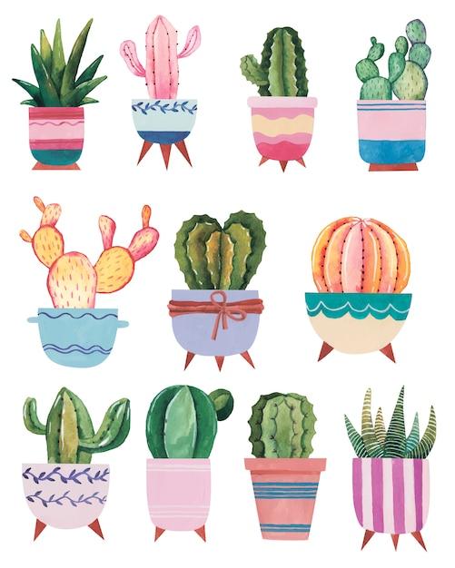 Illustrazione disegnata a mano dell'acquerello con cactus e piante grasse piante d'appartamento dell'acquerello su fondo bianco Vettore Premium