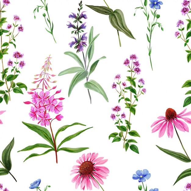 Reticolo senza giunte dell'acquerello, fiori di campo selvatici ed erbe Vettore Premium