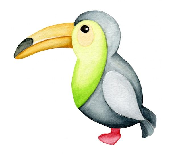 Singolo animale tucano dell'acquerello isolato Vettore Premium
