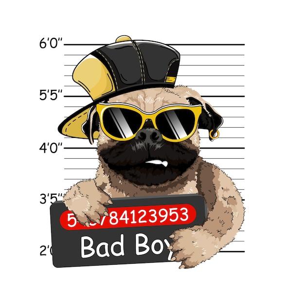 Bulldog francese gallese criminale. foto di arresto. foto segnaletica. cartello della polizia, foto segnaletica della polizia. Vettore Premium