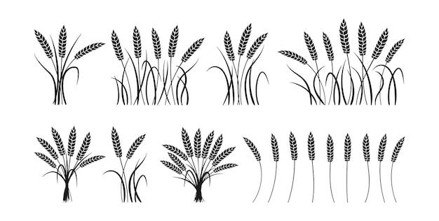 Set di sagoma nera del fumetto di spighe di grano covone, raccolta matura di grano mazzo, produzione di farina agricola Vettore Premium