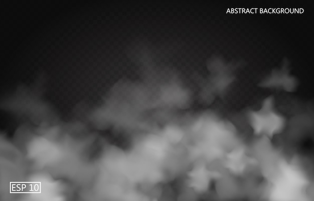 Nebbia bianca o fumo su sfondo scuro trasparente. cielo nuvoloso o smog. illustrazione Vettore Premium