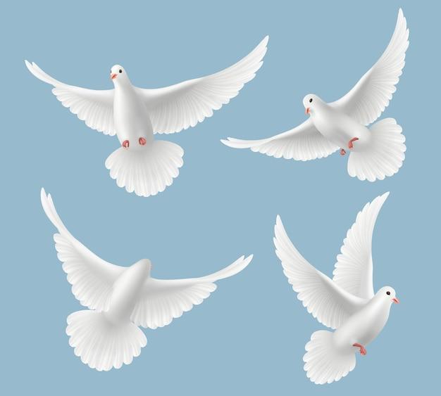 Piccioni bianchi. la colomba ama gli uccelli che volano nel cielo simboli di libertà e immagini realistiche di nozze Vettore Premium