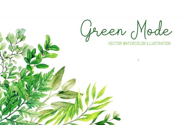 Erbe selvatiche, foglie e felci, cornice ad angolo verde Vettore Premium