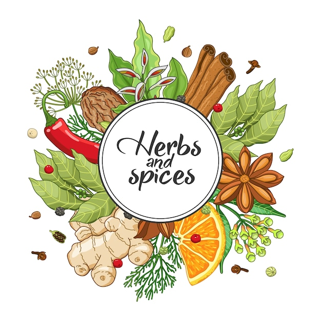 Turno invernale con spezie ed erbe aromatiche Vettore Premium