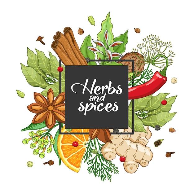 Design quadrato invernale con spezie ed erbe aromatiche Vettore Premium