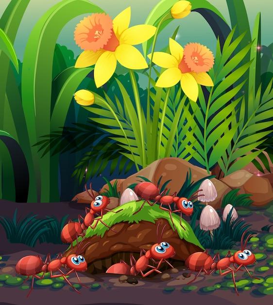 Formiche che lavorano al nido Vettore Premium