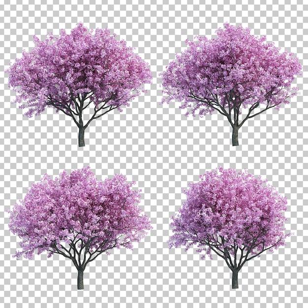 3d-weergave van kersenboom Premium Psd