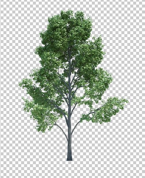 Aardobjecten boom op wit wordt geïsoleerd dat Premium Psd