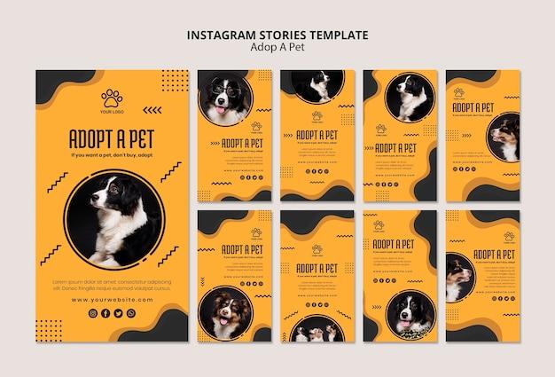Adotta storie di instagram per cani border collie Psd Gratuite