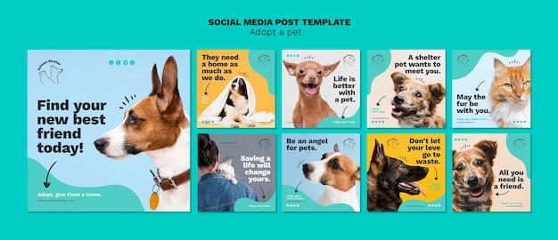 Adotta un post sui social media per animali domestici Psd Gratuite