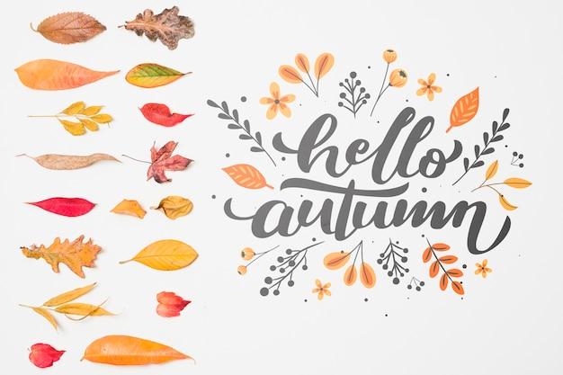 Bovenaanzicht decoratie met herfstbladeren Gratis Psd