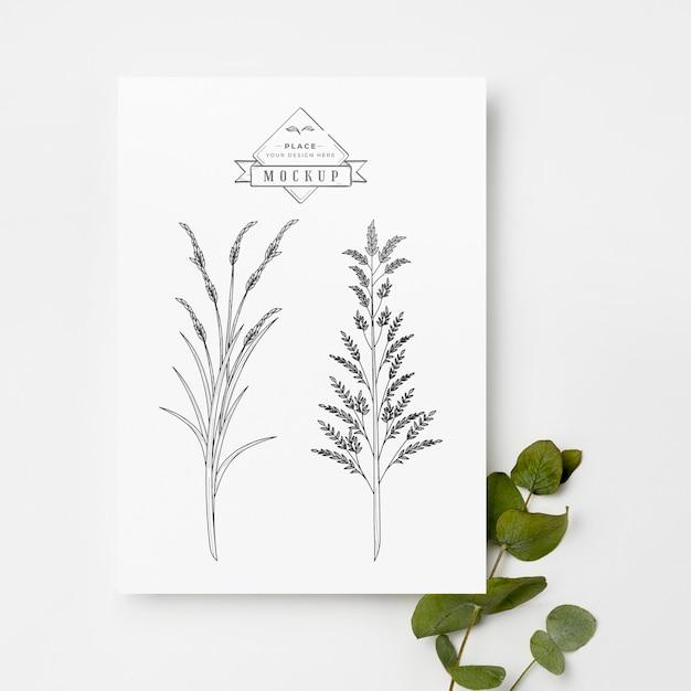 Bovenaanzicht van planten en bladeren mock-up Premium Psd