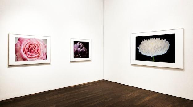 Collezione di pezzi d'arte floreali sul muro Psd Gratuite