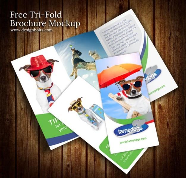 Colorido folleto de diseño maqueta plantilla psd | Descargar PSD gratis