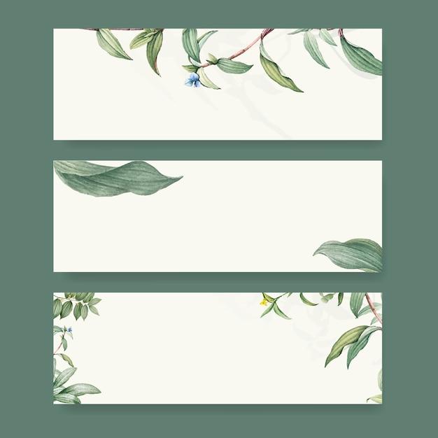 Conjunto de diseños de fondo botánico. PSD gratuito