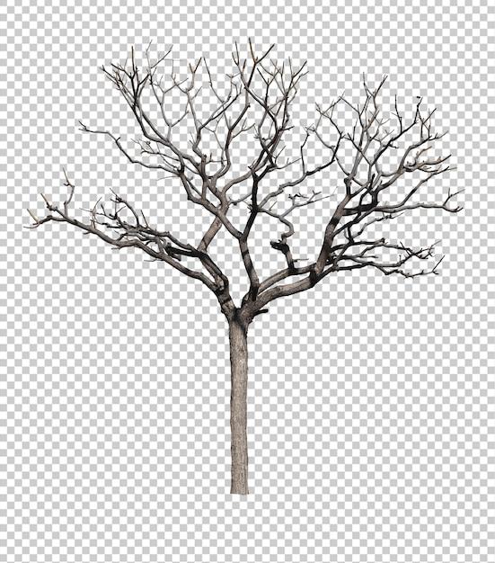 Donkere boom zonder bladeren geïsoleerd tegen witte achtergrond Premium Psd
