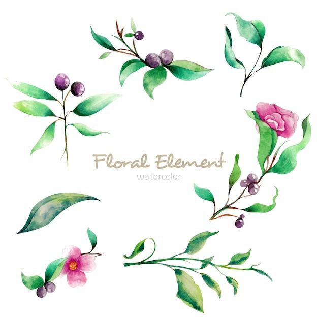 Elemento floreale dell'acquerello Psd Premium