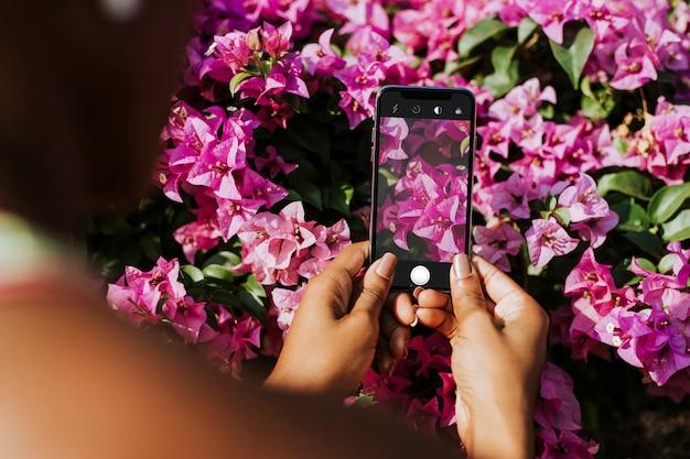 Fotografia di fiori Psd Gratuite