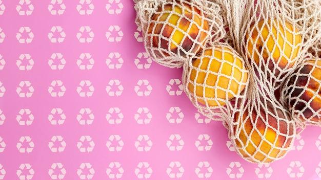 Fruit binnen schildpadzak met achtergrondmodel Gratis Psd