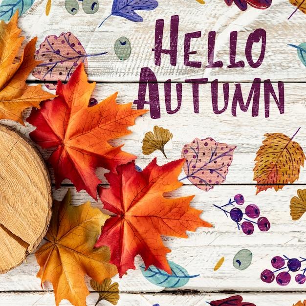 Hallo herfst met gedroogde bladeren en log Gratis Psd