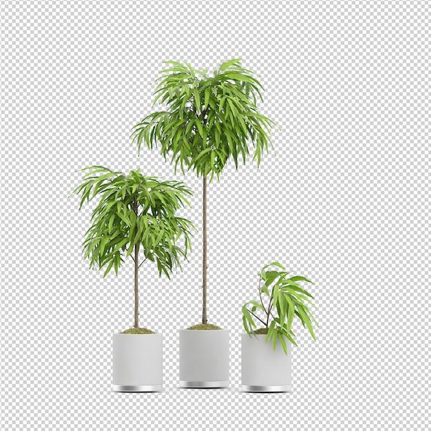 Isometrische plant 3d-rendering Premium Psd