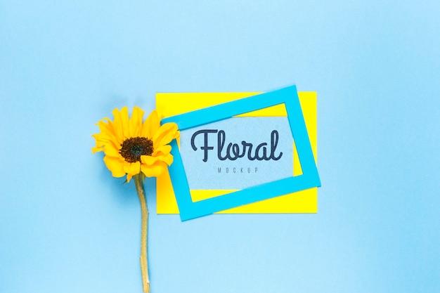 Kleurrijke frames met gele daisy Gratis Psd