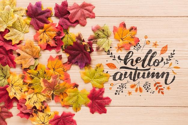 Kleurrijke opstelling van gedroogde bladeren Gratis Psd