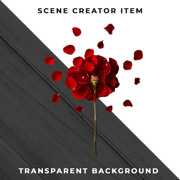 Oggetto floreale trasparente psd Psd Premium