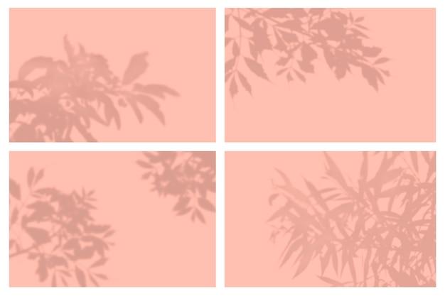 Ombra di foglie tropicali nel set di presentazione di effetti di luce naturale Psd Premium