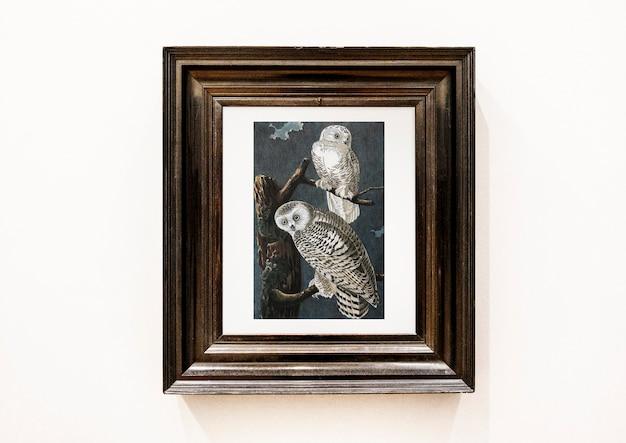 Pittura di gufi in una cornice di legno Psd Gratuite