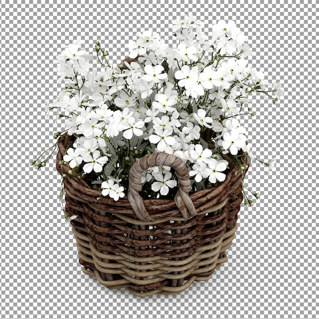 Planta blanca isométrica en cesta PSD Premium