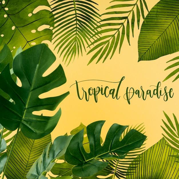 Plat leggen copyspace mockup met tropische bladeren Gratis Psd