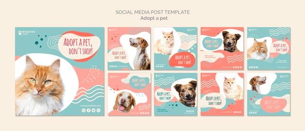 Post sui social media per l'adozione di animali domestici Psd Gratuite