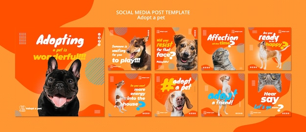 Raccolta di post su instagram per l'adozione di animali domestici dal rifugio Psd Gratuite