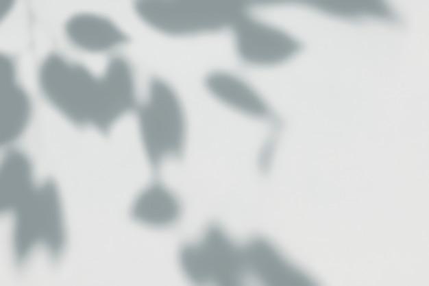 Schaduw van bladeren op een muur Gratis Psd