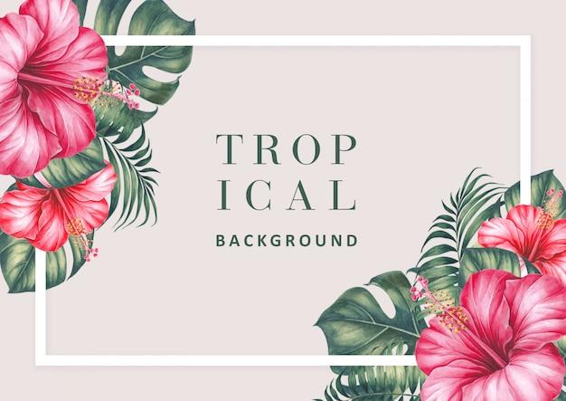 Sfondo tropicale con ibisco e palme. Psd Premium