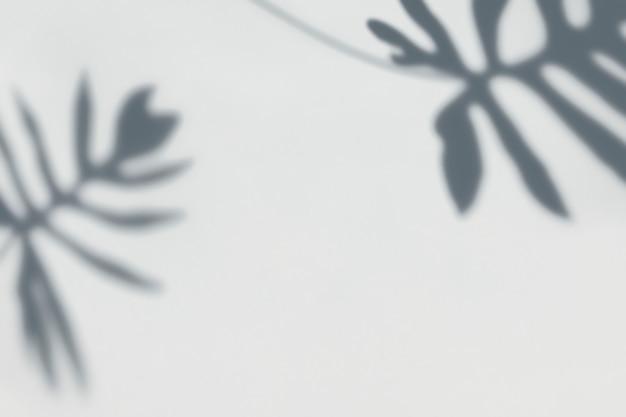 Sombra de hojas en una pared. PSD gratuito