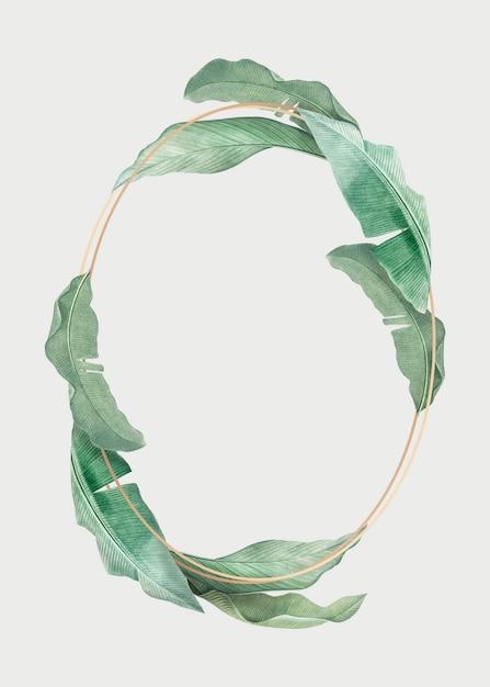 Tropisch bladerenframe Gratis Psd