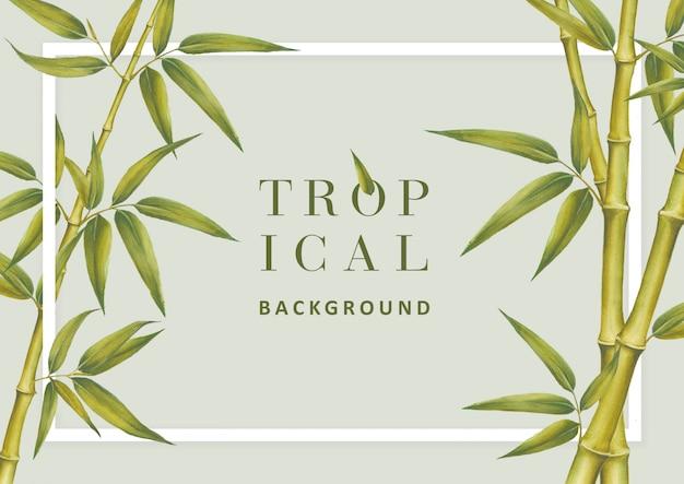 Tropische achtergrond Premium Psd