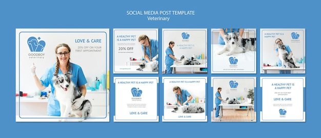 Veterinaire kliniek sociale media post-sjabloon Gratis Psd