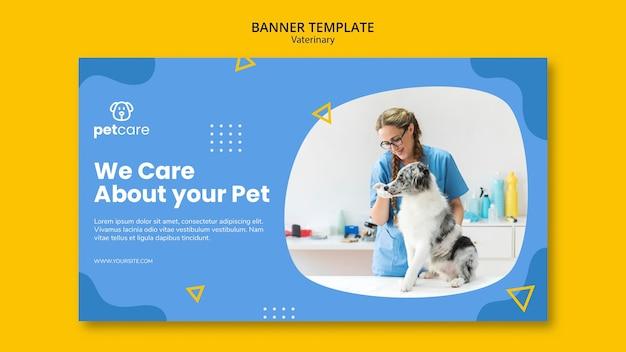 Veterinario che alimenta il modello veterinario dell'insegna del cane Psd Gratuite