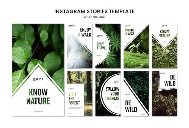 Wilde natuur vierkante instagram verhalen sjabloon Gratis Psd