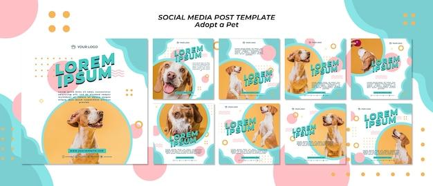 Adopter Le Modèle De Publication Sur Les Médias Sociaux Pour Animaux De Compagnie PSD Premium